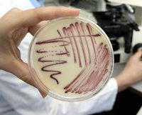 Antibiotikum k�nnte Tausende retten