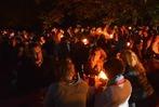 Fotos: Weiler Weinweg in Flammen
