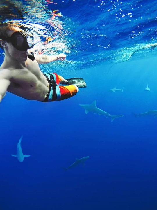 Auch vor Raubfischen haben die Brüder keine Angst: Selbstbildnis mit Haien.  | Foto: Caleb und Christopher Farro