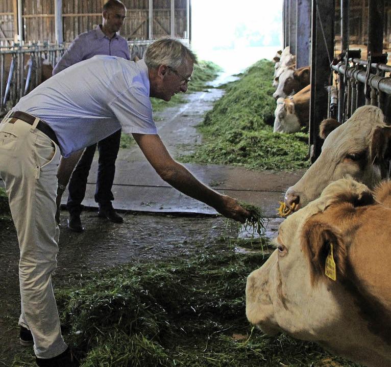 Futter für das liebe Vieh: Armin Schus...nhof vergeblich mit der Handfütterung.  | Foto: Reinhard Cremer