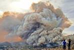 Fotos: Waldbrand auf Insel Madeira bedroht Hauptstadt