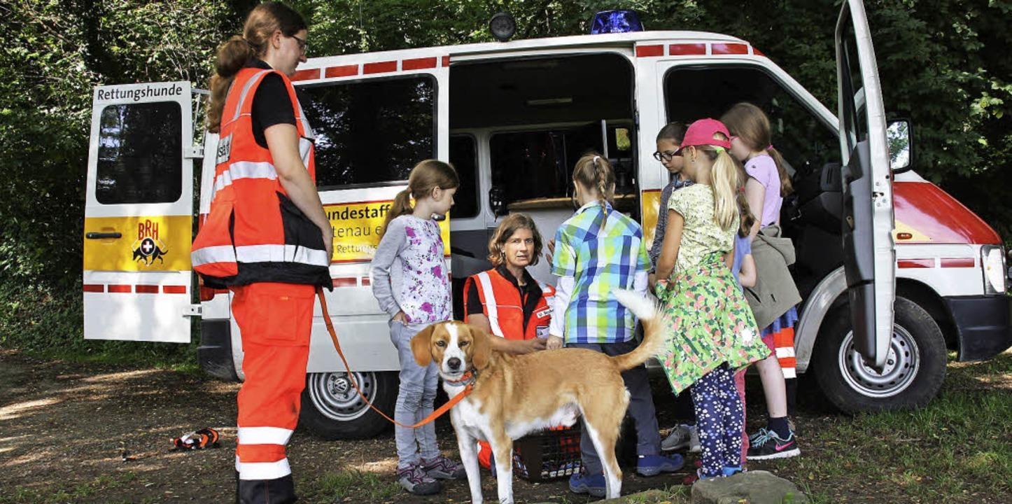 Auf zur Personensuche: Bei der Feriens...bildung und Arbeit von Rettungshunden.  | Foto: Christiane Franz