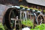 Fotos: Die Balzer-Herrgott-Runde bei G�tenbach