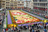 Blumenteppich in Br�ssel