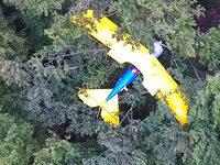 Bruchlandung im Wald - Pilot nach fast 13 Stunden gerettet
