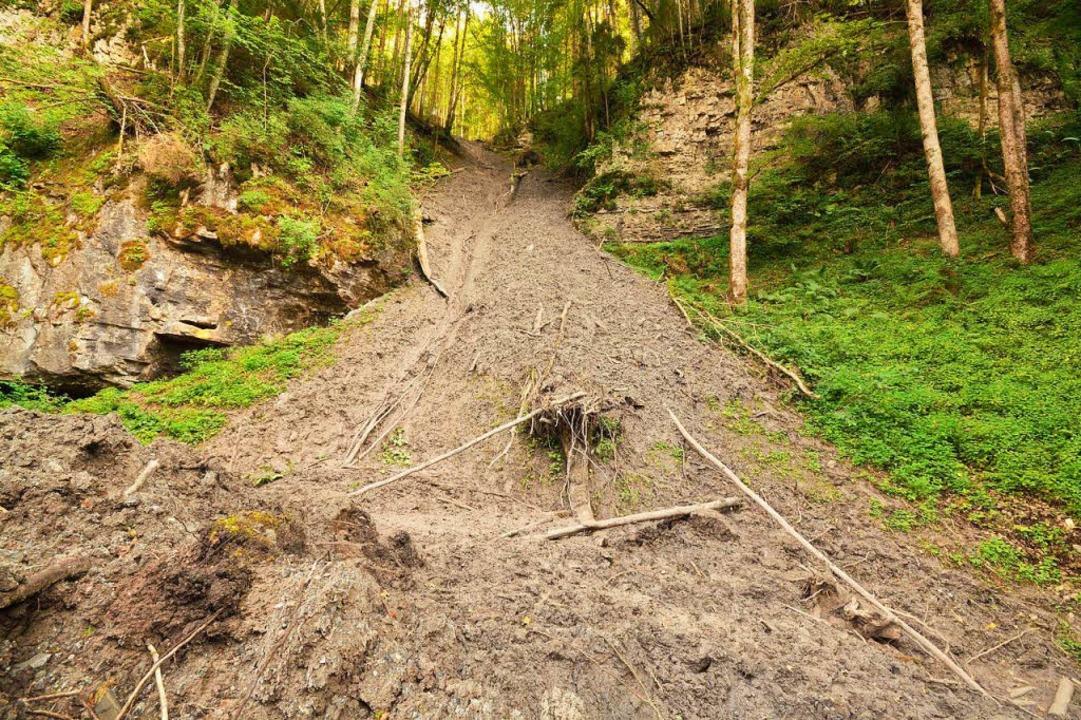 Der Erdrutsch beim Wanderweg oberhalb des Kanadiersteges.  | Foto: Martin Schwenninger