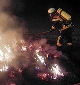 Das waren die kuriosesten Eins�tze der Kehler Feuerwehr