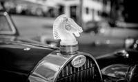 Musée Lalique: Nur vom Feinsten
