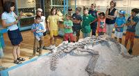 Vom Leben und Sterben der Dinos
