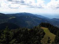 Warum mehr Menschen im Schwarzwald Urlaub machen