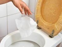 Feuchtes Toilettenpapier verstopft Kl�ranlagen im Land