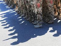 Bundeswehreinsatz im Inneren – Union will Grundgesetz �ndern