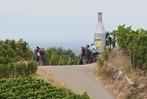 Der 18. Offenburger Weinwandertag