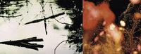 Kulturverein Artisse zeigt im Forum in Merzhausen bis 24. November Fotografien von Roland G. Knoll. Ein K�nstlergespr�ch findet am Dienstag, 25. Oktober, von 19 bis 21 Uhr statt