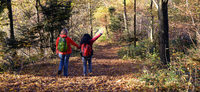 Mit Kindern im Wald: Eine zauberhafte Wanderung am Schauinsland