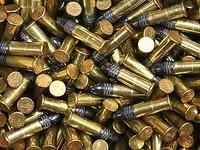 Gemeinderat stimmt gegen Bau einer Munitionsfabrik