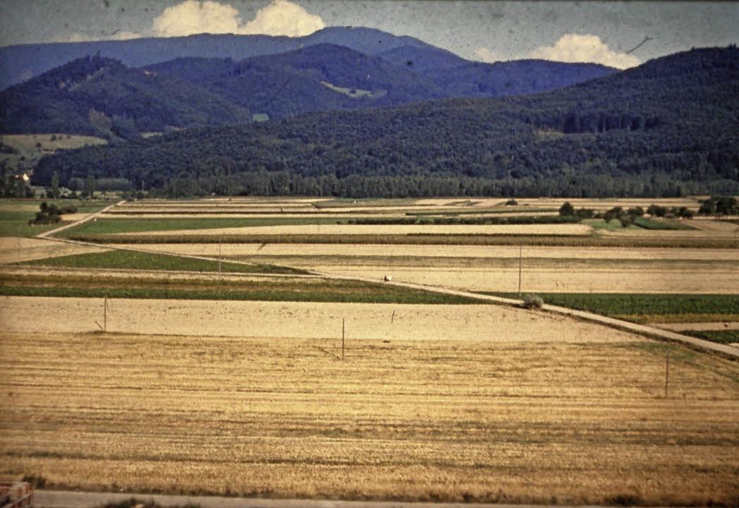 Ein Blick vom Mauracher Berg in Richtu...r Äcker, heute Hoch- und Reihenhäuser.  | Foto: -
