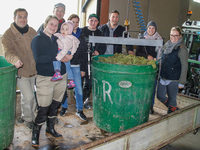Winzernachwuchs kreiert Wein in Eigenregie