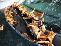 Autofahrer sollten sich auf die Herbst-T�cken einstellen