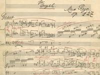 "Das Freiburger Klassik-Festival ""Bach pur"" beginnt"