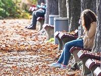 50 Dinge, die man im Herbst in Freiburg unternehmen kann