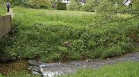Durbach will Hochwasserschutz – aber den richtigen