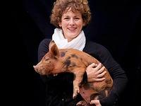 Gl�cklich und lecker: englische Schweine aus Oberkirch