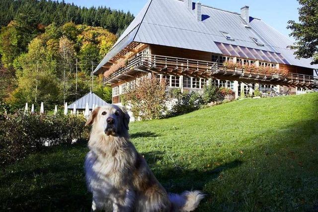 Das Gasthof Sommerau in Bonndorf-Sommerau