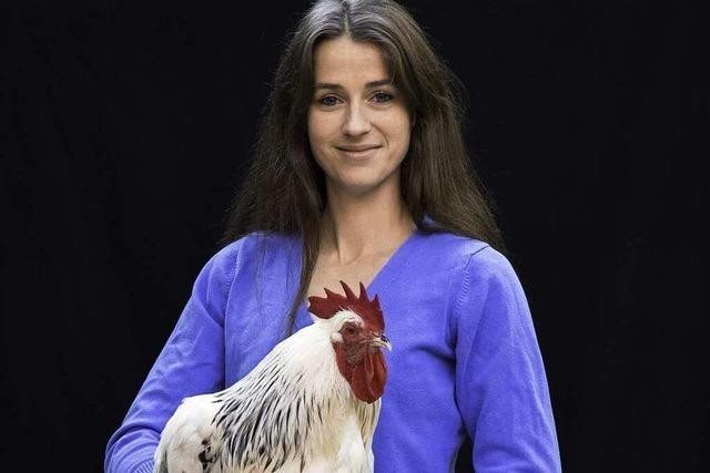 Sundheimer Hühner sind ein eierlegender Festtagsbraten