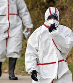 Vogelgrippe-Epidemie breitet sich aus
