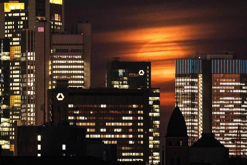 Die Frankfurter Skyline im Licht des Supermondes. (Foto: dpa)