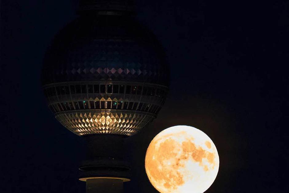Der Supermond auf Höhe des Berliner Fernsehturms. (Foto: dpa)