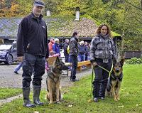"""""""Eddy vom Langgarten"""" schlägt sich gut in der Schäferhunde-Prüfung"""