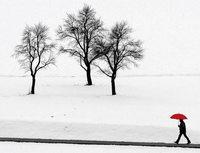 Elementar wie der Tod: Einsamkeit
