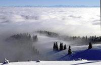 Über das Nebelmeer zu den Alpen