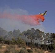 Brände in Israel und Westjordanland sind unter Kontrolle