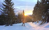 Traumhafte Schneetage im hohen Norden