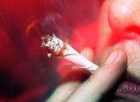 Acht von 48 saßen unter Drogeneinfluss am Steuer