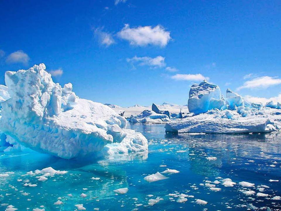 Eisig kalt ist das Meer rund um die An...er eher selten so freundlich wie hier.  | Foto: dpa-tmn