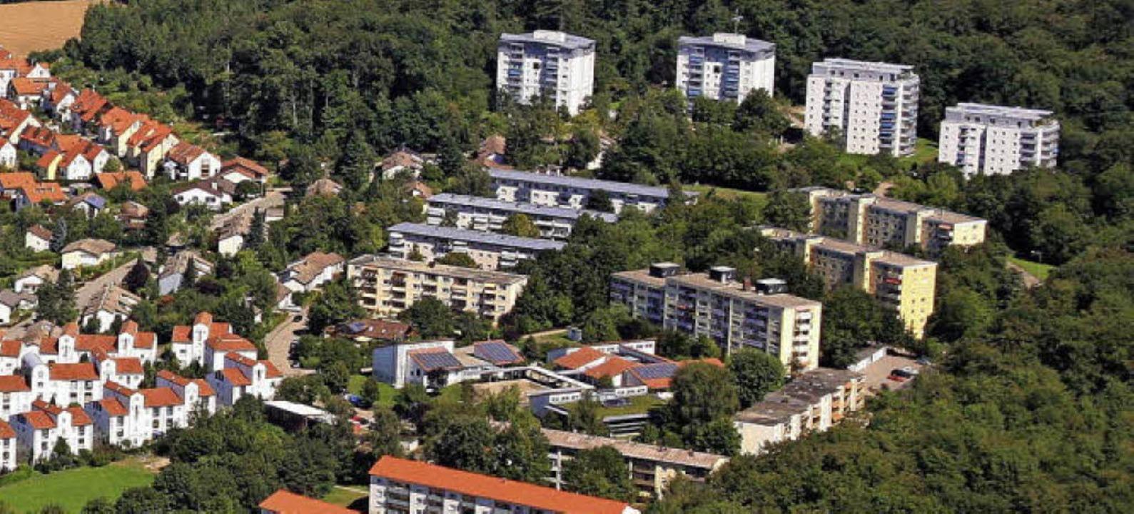 Am Waldrand südlich der Salzertstraße ...chhäuser mit Mietwohnungen entstehen.     Foto: Erich Meyer