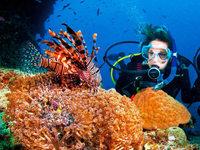 Klimawandel wirkt sich auf das Great Barrier Reef aus