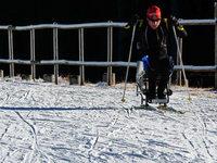Benjamin Rudiger trotzt im Schlitten seinem Handicap
