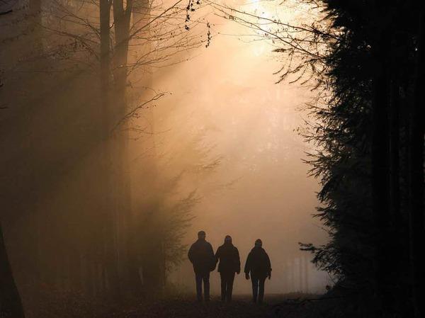 Spaziergang im nebligen Sonnenuntergang -  eingefangen von Harald Kurz.