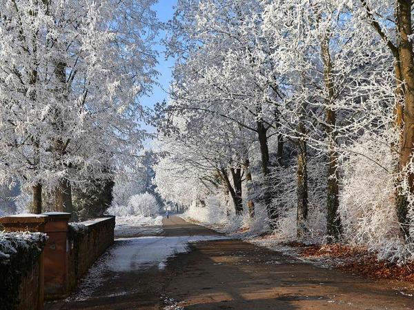 Am Neujahrstag in Hugsweier auf dem Weg zum Friedhof.