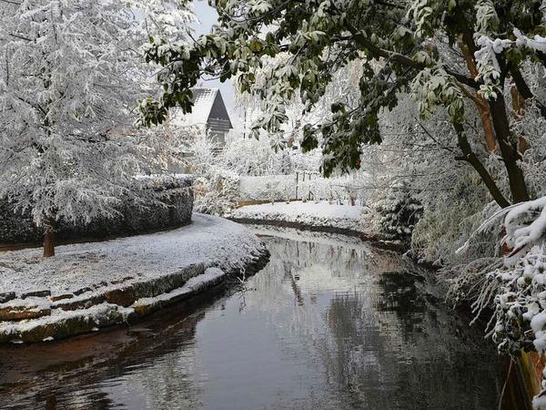 Am Neujahrstag sorgte der Raureif in Hugsweier auch am Schutterlauf für eine zauberhafte Winterlandschaft.