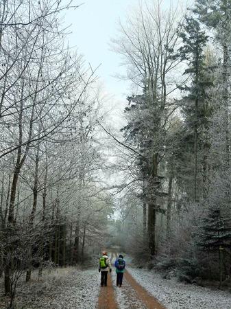 Wanderung  von Lahr in Richtung Geroldseck