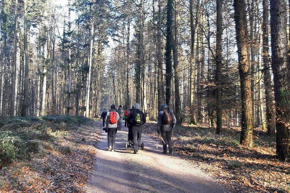 Wanderung  von Lahr in Richtung Geroldseck (Foto: Christian Kramberg)