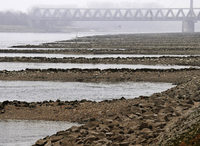 Rhein führt zu wenig Wasser