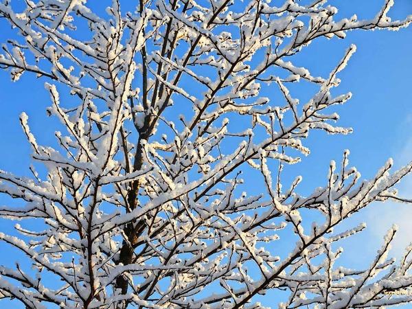 Entspannte Spaziergänge und lustige Rutschpartien im Schnee sind endlich möglich.