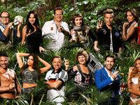 """Diese """"Stars"""" ziehen für RTL ins Dschungelcamp"""